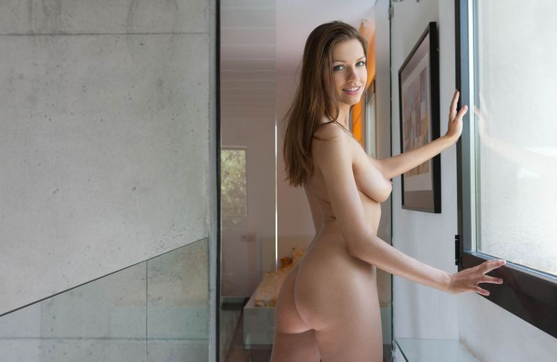 all glass hallway nudity (5).jpg