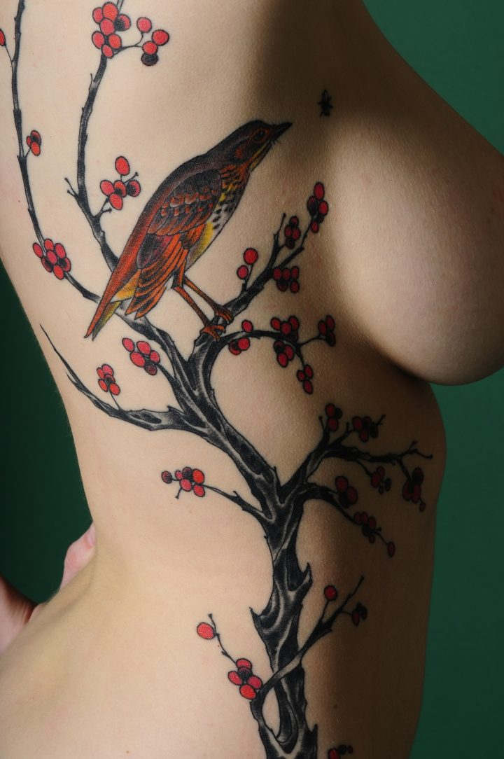 Rib Bird tattoo.jpg