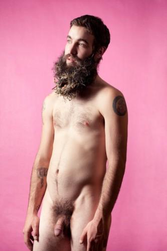 nude bearded nest