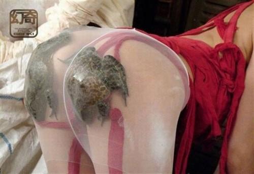 frog ass