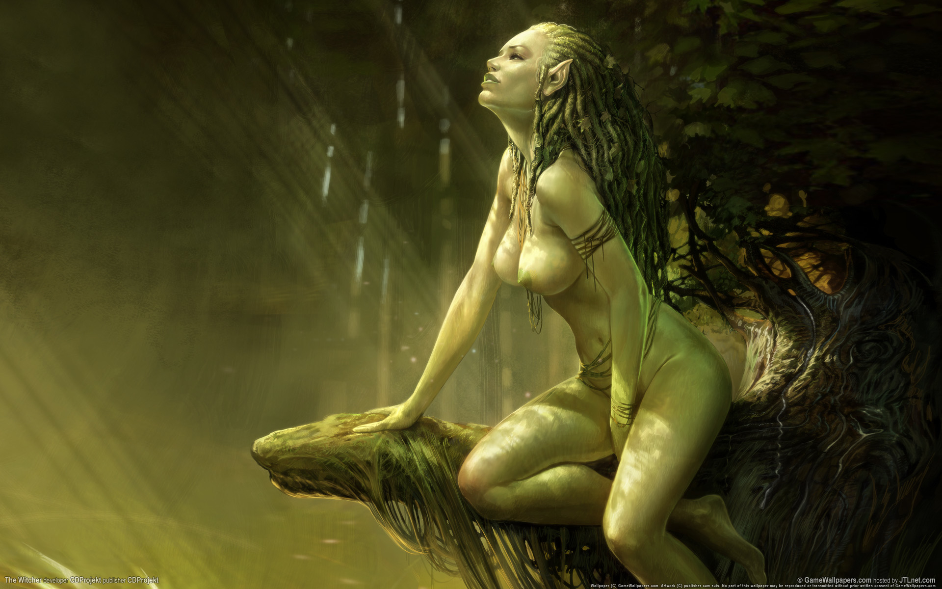 Nude hot elf women remarkable, very