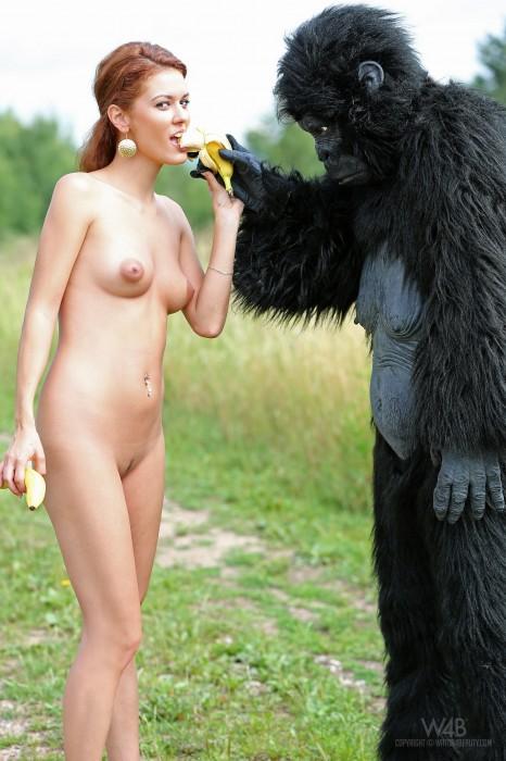 nude gorilla banana eater.jpg