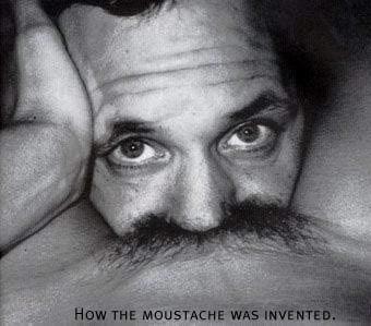 moustache.jpg (20 KB)