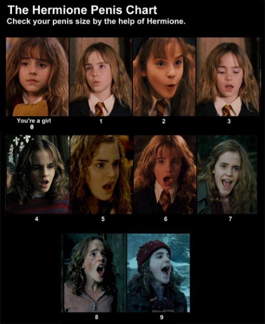 Hermione_penis_chart.jpg (56 KB)