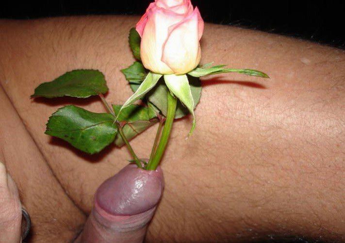 huy-kak-roza