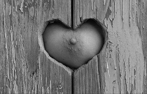 Heart.jpg (50 KB)