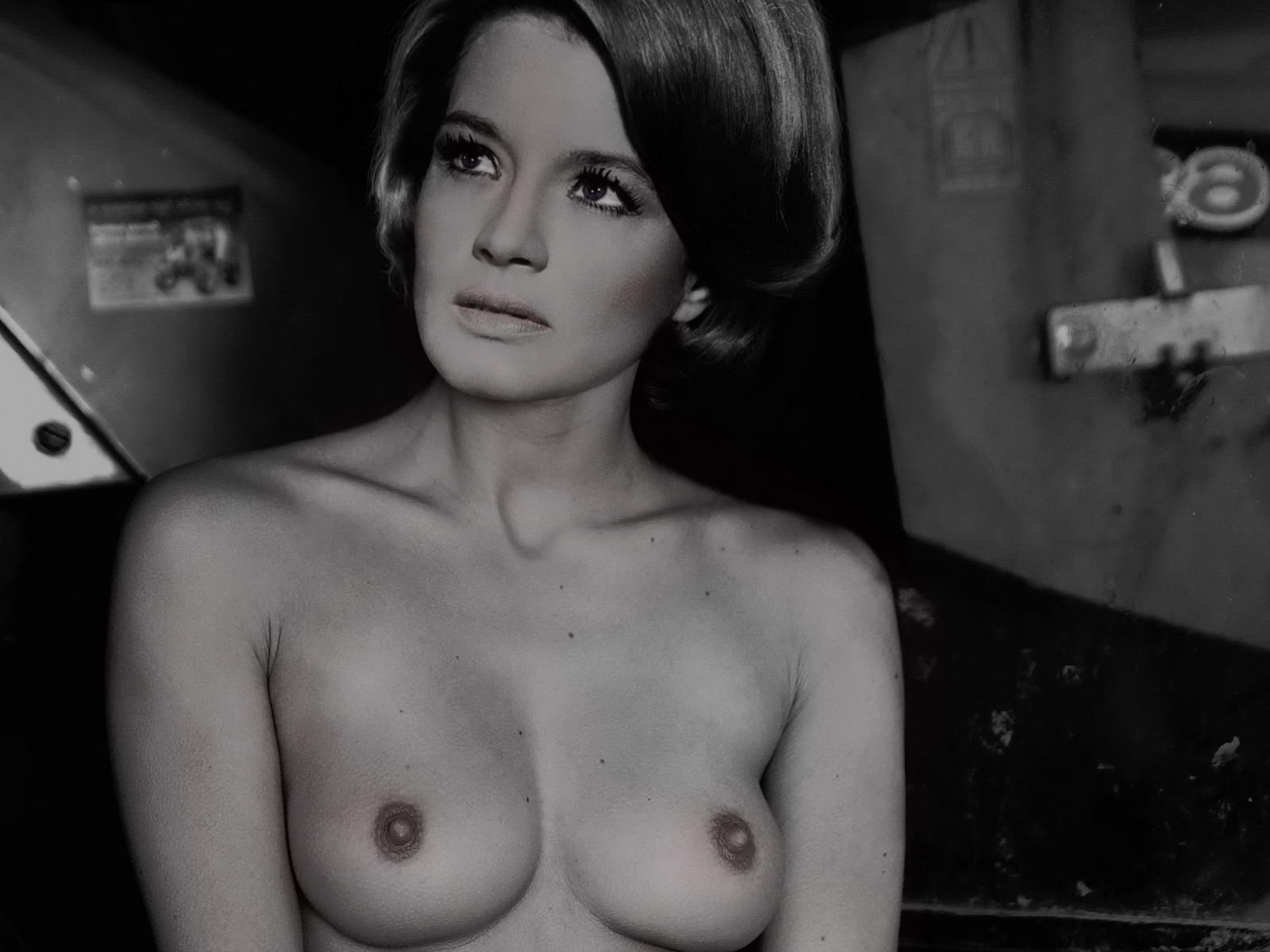 Angie dickinson nude black and white portrait photo